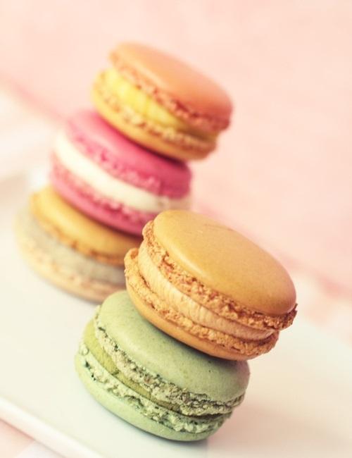 Macaron Tastings