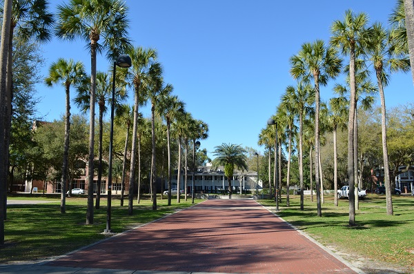A Day At The University Of Florida