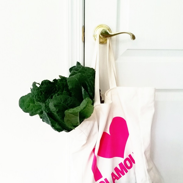 Friday's Five - Dinosaur Kale