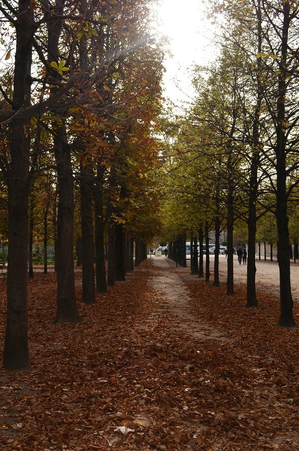 Jardin des Tuileries | Autumn in Paris