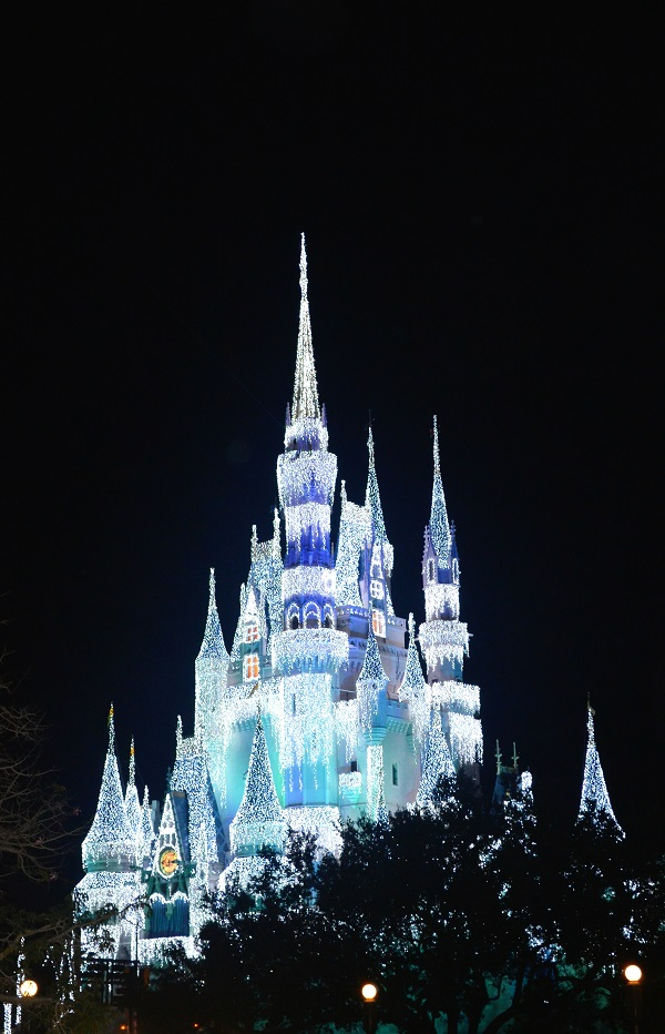 magic kingdom9
