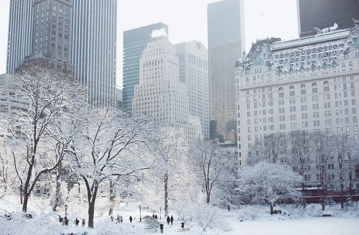 The best things to do in new york city during the holidays for Things to do in new york in winter