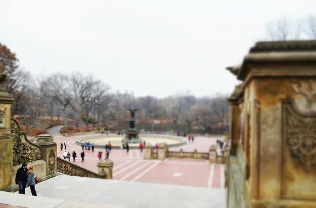 central park12