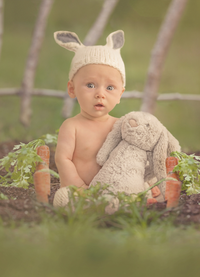 luc-bunny